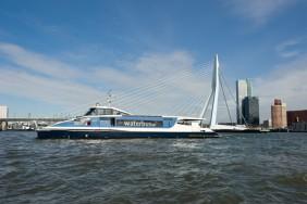 Rotterdam-Erasmusbrug-1024x681