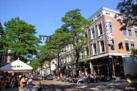 Witte-de-Withstraat-urban-safari-3-282x188